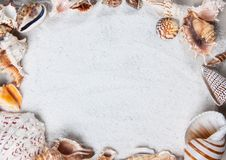 summer, sea shells. Beautiful summer background texture Stock Photography