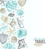 Summer Sea Shells Postcard Design Stock Photography