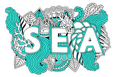 Summer sea shells, waves, corals and seaweeds banner design. Vector  background. Yand drawn emblem Stock Photography