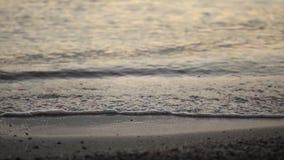 Summer sea shore small waves splashes stock video