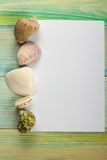 Summer sea vacation mockup background. Notebook blank page with Travel items on blue green wooden table. Sea shells Stock Images