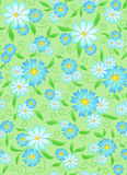Summer Seamless Background With Camomile Stock Photo