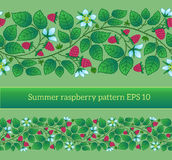 Summer seamless border template with raspberry, leaves and flowe Stock Photo