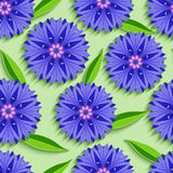 Summer seamless pattern with 3d cornflowers and leaves Stock Image