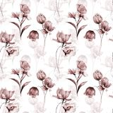 Summer seamless pattern with flowers. Watercolor illustration Royalty Free Stock Photo