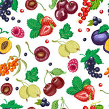 Summer seamless pattern with garden berries on a white background Royalty Free Stock Images