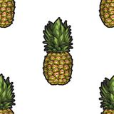 Summer seamless pattern with hand-drawn pineapple on white background. Vector illustration. Stock Illustration