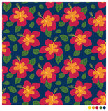 Hibiscus flower seamless patterm. Summer seamless  pattern with hibiscus flower Royalty Free Stock Photo