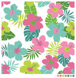 Hibiscus flower seamless patterm. Summer seamless  pattern with hibiscus flower Royalty Free Stock Photography