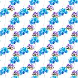 Summer seamless pattern with Hydrangea flowers. Watercolor illustration Royalty Free Stock Photography