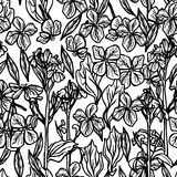 Summer seamless pattern, leaves and flowers, sketch, black outline on white background. Vector Royalty Free Stock Photo