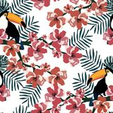 Colorful tropical seamless pattern with funny toucans,flowers and leafs.Summer vector background.Graphic textile texture royalty free illustration