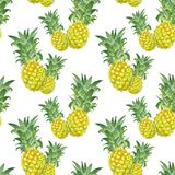 Summer seamless pattern with tropical pineapple fruits. Watercolour tropical hawaiian print. Seamless pattern with watercolor isolated fresh ripe pineapples on royalty free stock image