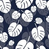 Summer seamless pattern with white monstera palm leaves on blue background. 