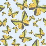 Summer seamless pattern with yellow butterflies Stock Images