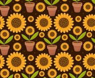 Summer seamless pattern with yellow sunflower flowers. Village endless background, repeating texture. Vector. Summer seamless pattern with yellow sunflower Stock Photos