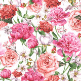 Summer Seamless  Watercolor Pattern with Pink Peonies and Roses on a White Background Stock Images