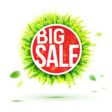 Summer season big sale bright colors label Royalty Free Stock Images