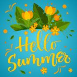 Summer season - Hello Summer - colorful handwrite calligraphy stock illustration
