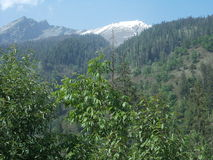 Summer season of Manali Stock Photos