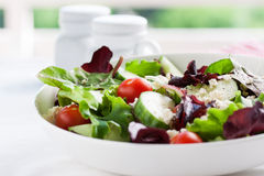 Summer season salad with salad leaves, tomatoes, cucumbers, Italian herbs and cheese in a bowl on a table Royalty Free Stock Photos