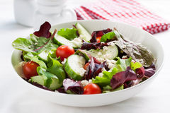 Summer season salad with salad leaves, tomatoes, cucumbers, Italian herbs and cheese in a bowl on a table Royalty Free Stock Image