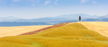 Country in Tuscany stock photos