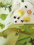 Summer seasonal composition of fruits, vegetables, flowers on a white plate and green tinted paper royalty free stock photography