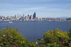 Summer in Seattle stock images