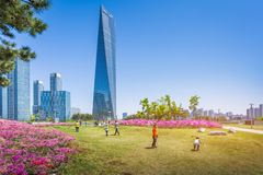 Summer in Seoul with Beautiful flower, Central park in Songdo International Business District, Incheon South Korea