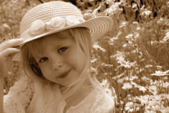 Summer Sepia Royalty Free Stock Images