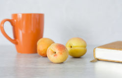 Summer set: apricots, cup, book Stock Photos