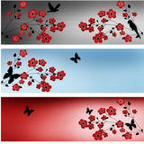 Summer set banners with red flowers and butterflies Royalty Free Stock Photo