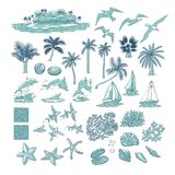 Summer set tropical plants marine and water animals. Island with palm among ocean, different dolphins seagulls fish and other unde. Rwater inhabitants vector illustration