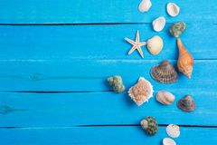 Summer setting With Few Marine Items background. Summer setting With Few Marine Items on old blue wooden background stock image