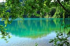 Summer shade at idyllic lake Royalty Free Stock Image
