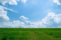 Summer shining meadow with blue sky and fluffy clouds. Summer shining meadow. Feel of real sunlight. Bright blue sky, white fluffy clouds and green meadow Royalty Free Stock Images