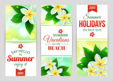 Summer shining typographical banners with tropical Stock Photography