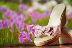 Summer shoes Royalty Free Stock Photo