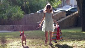 Summer shopping, joyful little girl with new purchases and dog on leash walks after visiting boutiques. On sunlit park stock video