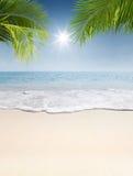 Summer shore Stock Photos