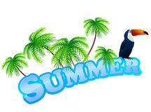 Summer sign with toukan Stock Photos