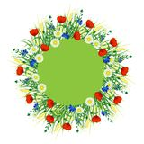 Summer. Signboard round on white background. Concept Summer. In the center round green signboard around the field grass, herbs and flowers. Place for text. On Royalty Free Stock Photography