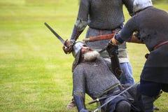 Summer Skirmish Royalty Free Stock Photos