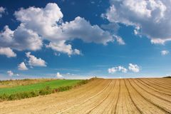 Summer Sky. Summer blue sky over a plowed field Royalty Free Stock Photography