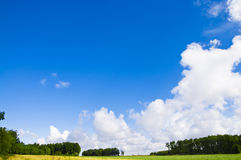 Summer sky. Sky, field and forest during summertime Royalty Free Stock Photo