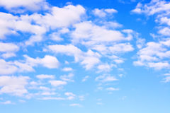 Summer sky. In a sunny day Stock Photography