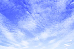Summer sky and clouds Stock Image