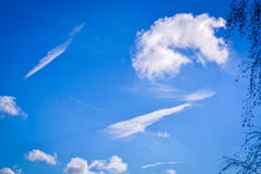 Summer sky with interesting white cloud Stock Photography