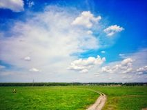 Summer sky over green grass. Clouds and green grass royalty free stock photography